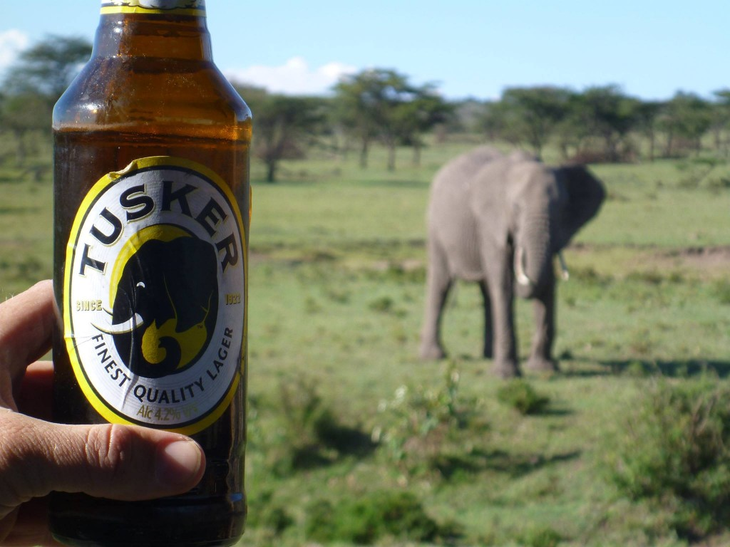Serving Elephants and African Beer